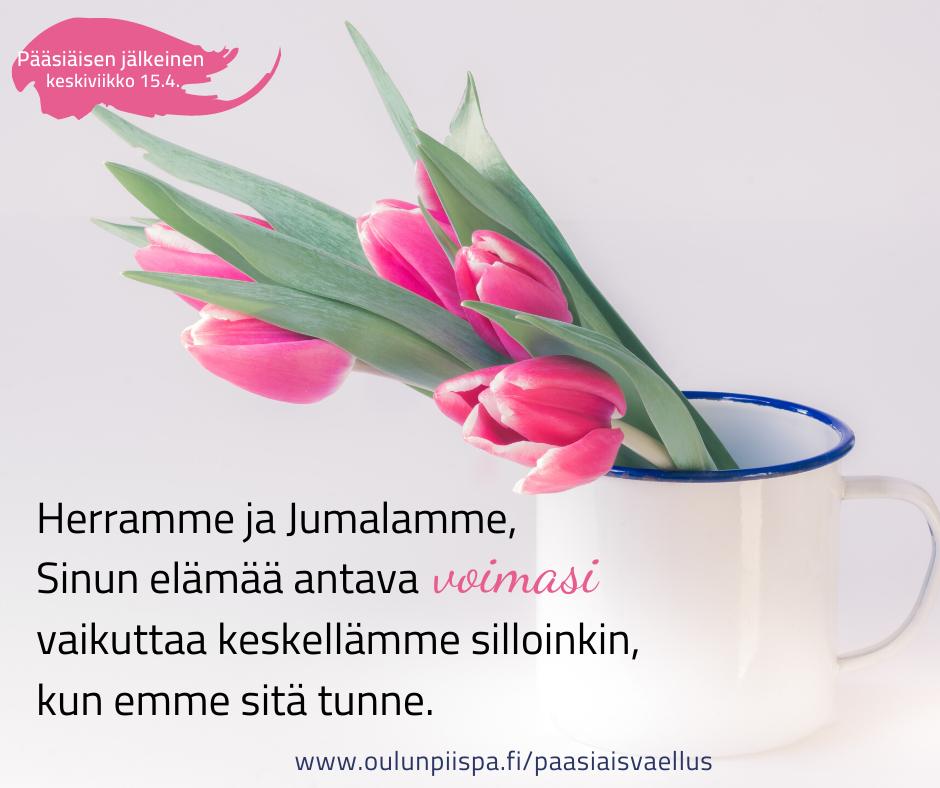 Kuvassa tulppaaneja, päällä teksti: Herramme ja Jumalamme, sinun elämää antava voimasi vaikuttaa keskellämme silloinkin, kun emme sitä tunne.